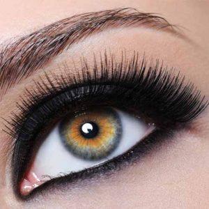 eyelash-excellence-russian-volume-training-1.jpg